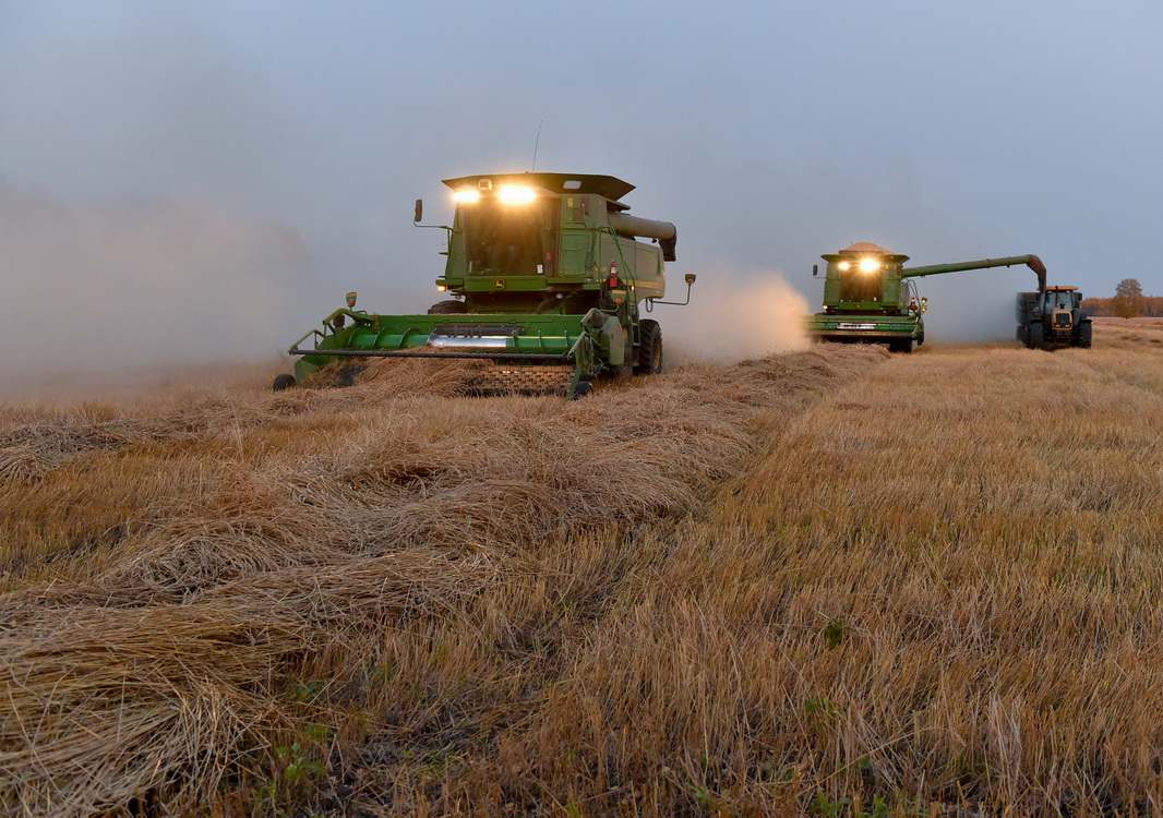 На севере Казахстана возмущены электронными зерновыми расписками