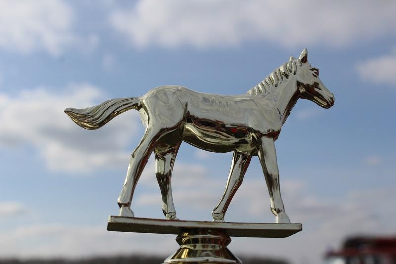 Конные скачки в Казахстане 2016