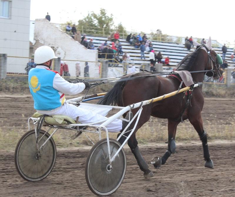 На севере Казахстана провели конные скачки