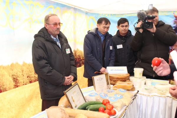 Всего 20% сельхозпродукции перерабатывают в Северо-Казахстанской области