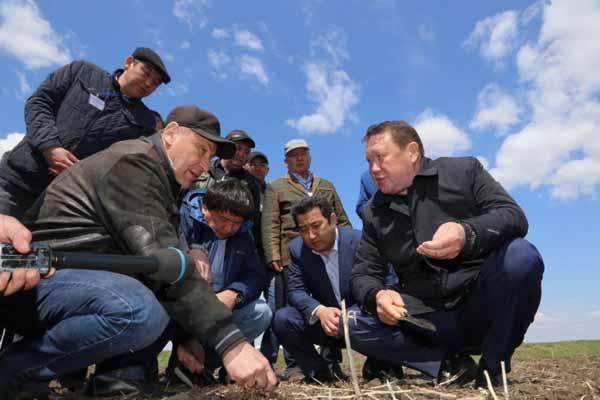 На севере Казахстана будет запущен крупнейший мясокомбинат в Центральной Азии