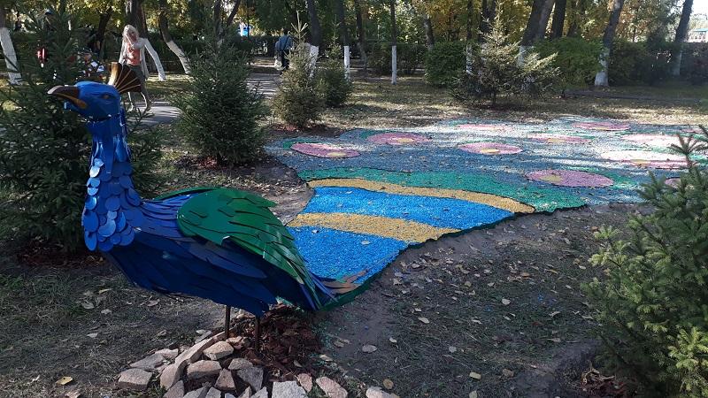 В городском парке Петропавловска появился павлин