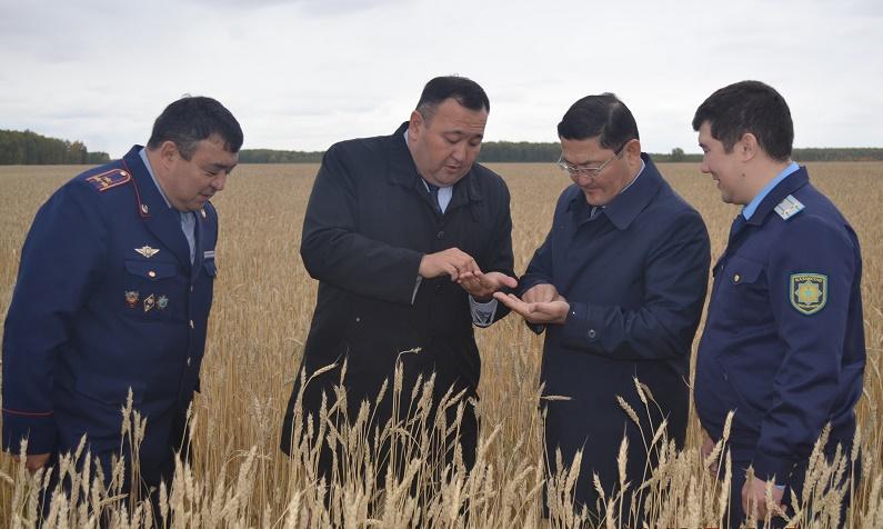 Вопросы качества медицинского обслуживания и образования на севере Казахстана подняли прокуроры