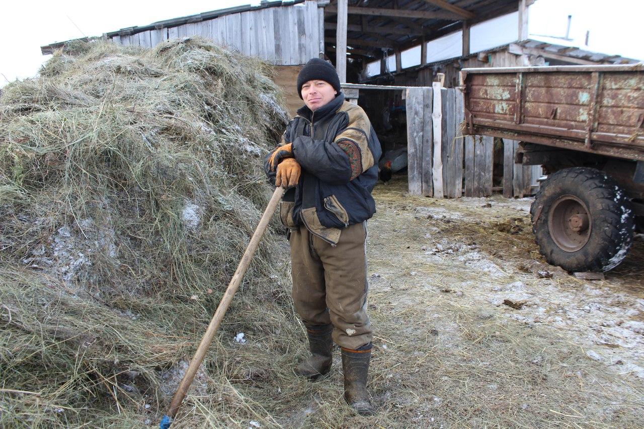 Что мешает развитию животноводства в Северо-Казахстанской области