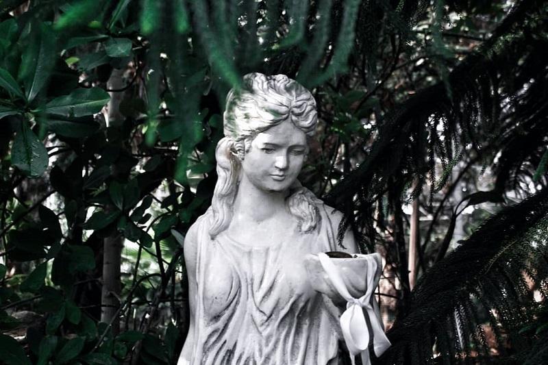 В Петропавловске рассказали о судьбе Ботанического сада