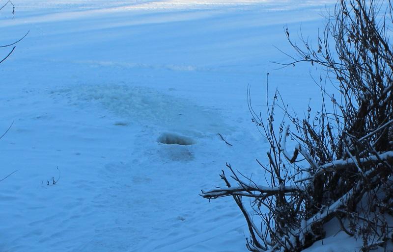Северный Казахстан: жители Покровки пьют воду из Ишима