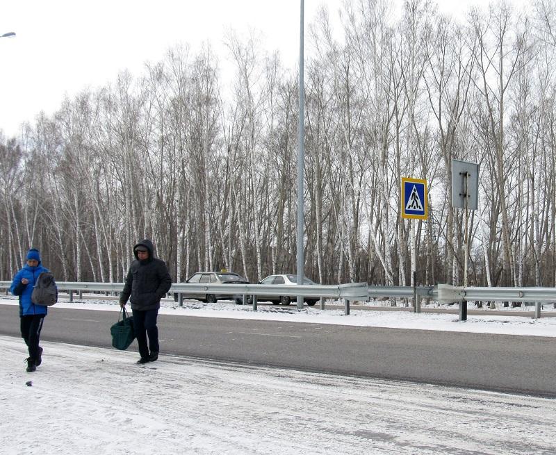 На севере Казахстана разрезали автобан
