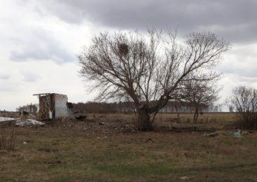 14000 человек уехали в 2019 году из Северо-Казахстанской области