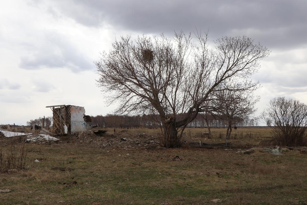 Упраздненные и опустевшие: сёла Орталык и Жаналык на севере Казахстана