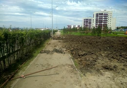 В Петропавловске на бесхозных пустырях обустроят скверы