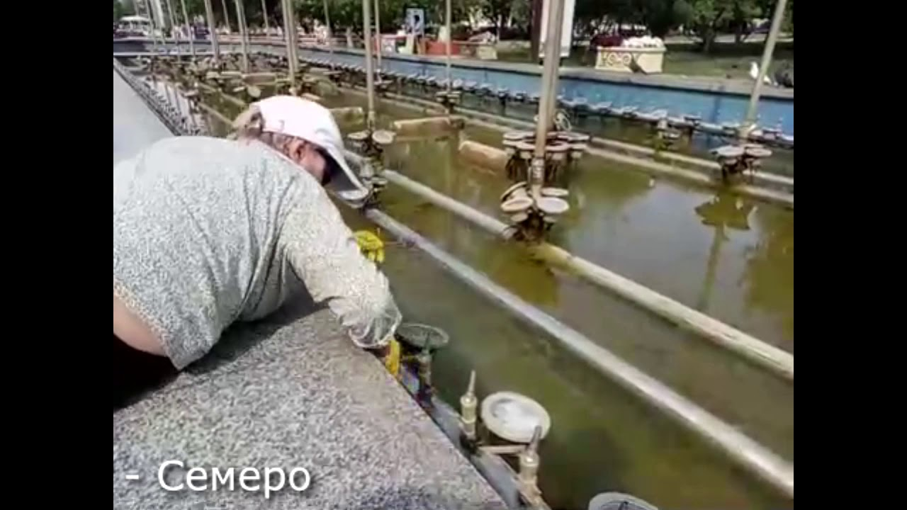 В Петропавловске фонтан моют швабрами