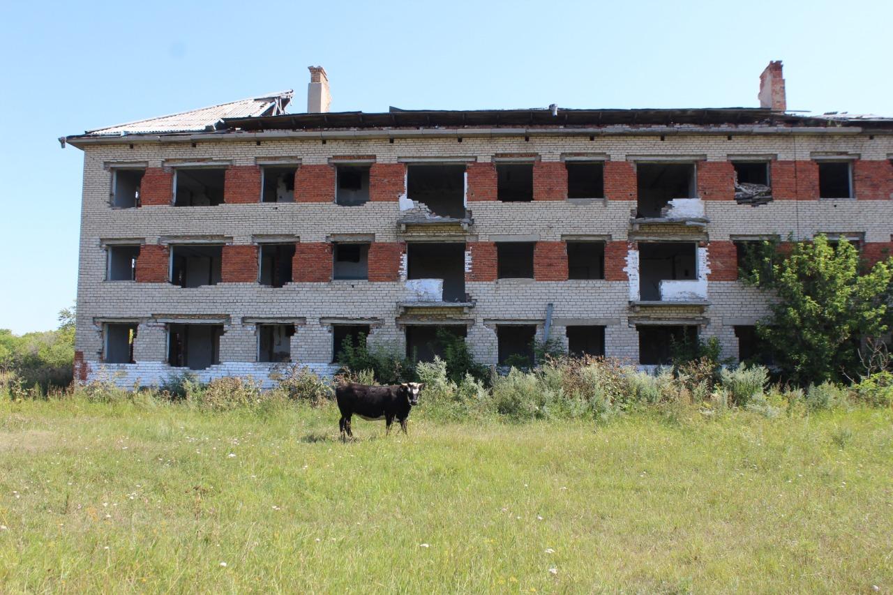 Пустые дома поселка Шагалалы в Северном Казахстане
