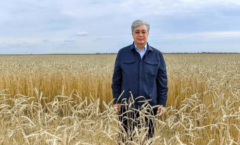 Как будут проводить посевную в рамках карантина в Казахстане