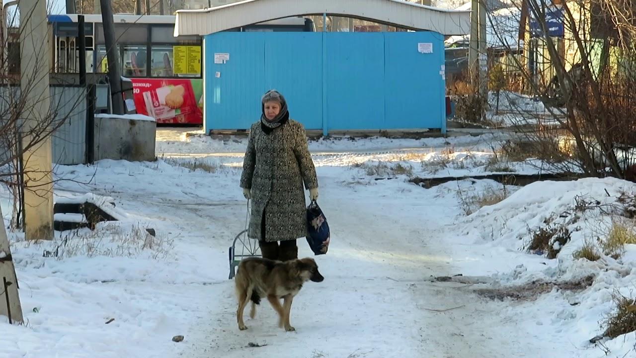 Улицы Петропавловска, где царит «легкая разруха»: Медведева