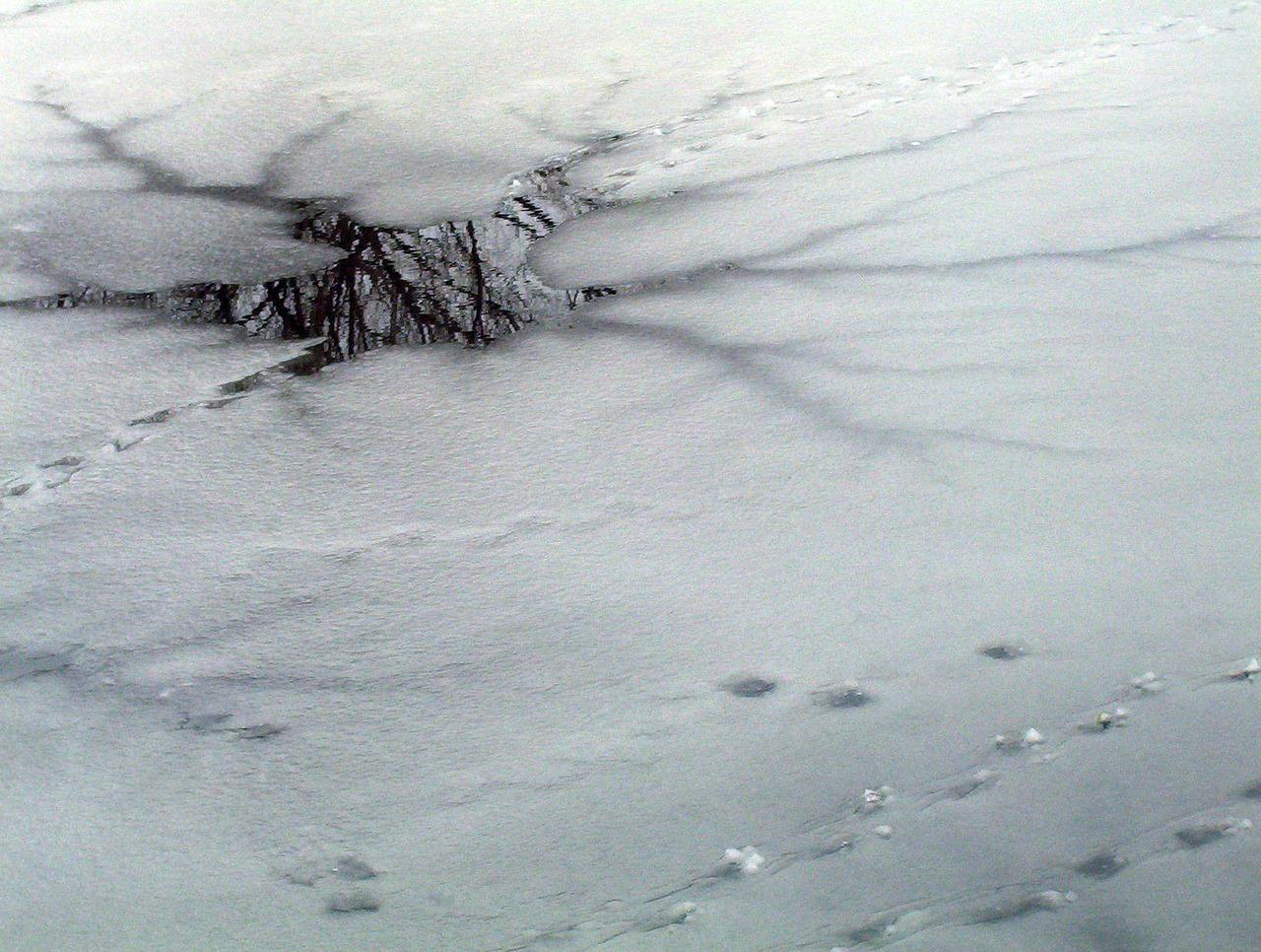 В Северо-Казахстанской области сельчане пьют воду из озера
