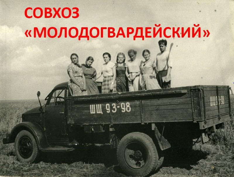 Молодогвардейское — 54