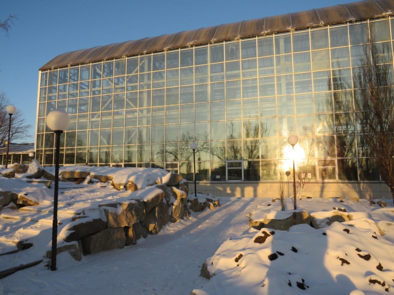 Ботанический сад Петропавловска рискует оказаться в тени