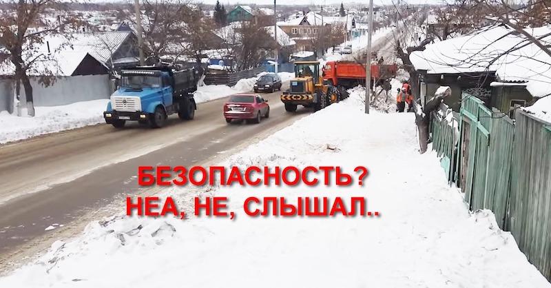 Петропавловская резня бензопилой: как НЕ надо пилить деревья!