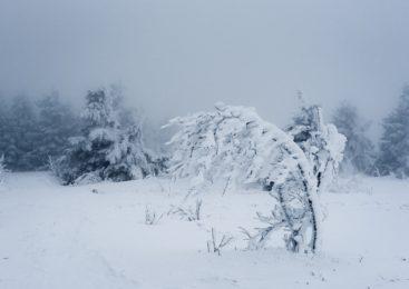 На севере Казахстана заблудился подросток в буран