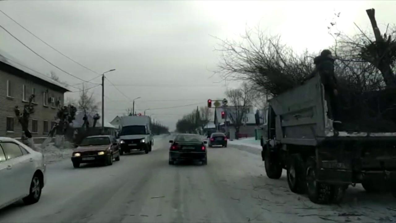 В Петропавловске жителей возмутила массовая вырубка деревьев