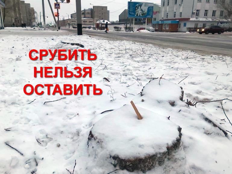 Улицу Горького в Петропавловске «стригут» налысо
