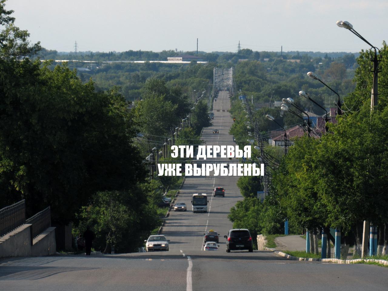 Петропавловск без деревьев утонет в пыли и CO2