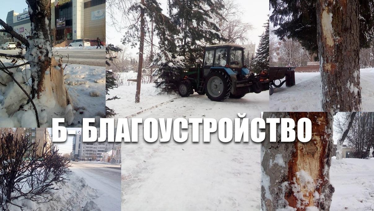 В Петропавловске чистят снег так, что деревья трещат