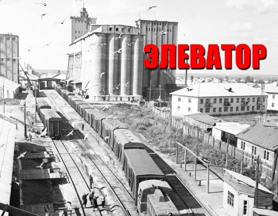 Петропавловский элеватор: редкие фотографии из прошлого