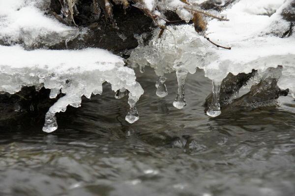 В Северо-Казахстанской области  ожидают подъём уровня воды в реках
