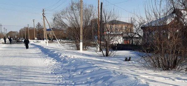 Ситуация с коронавирусом в районах Северо-Казахстанской области на 11 декабря