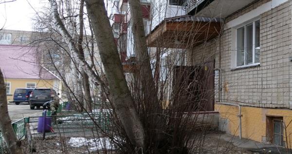 Жители Петропавловска сдали свою соседку полиции за торговлю алкоголем