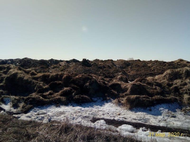 Паводок смоет петропавловский мусор в реку