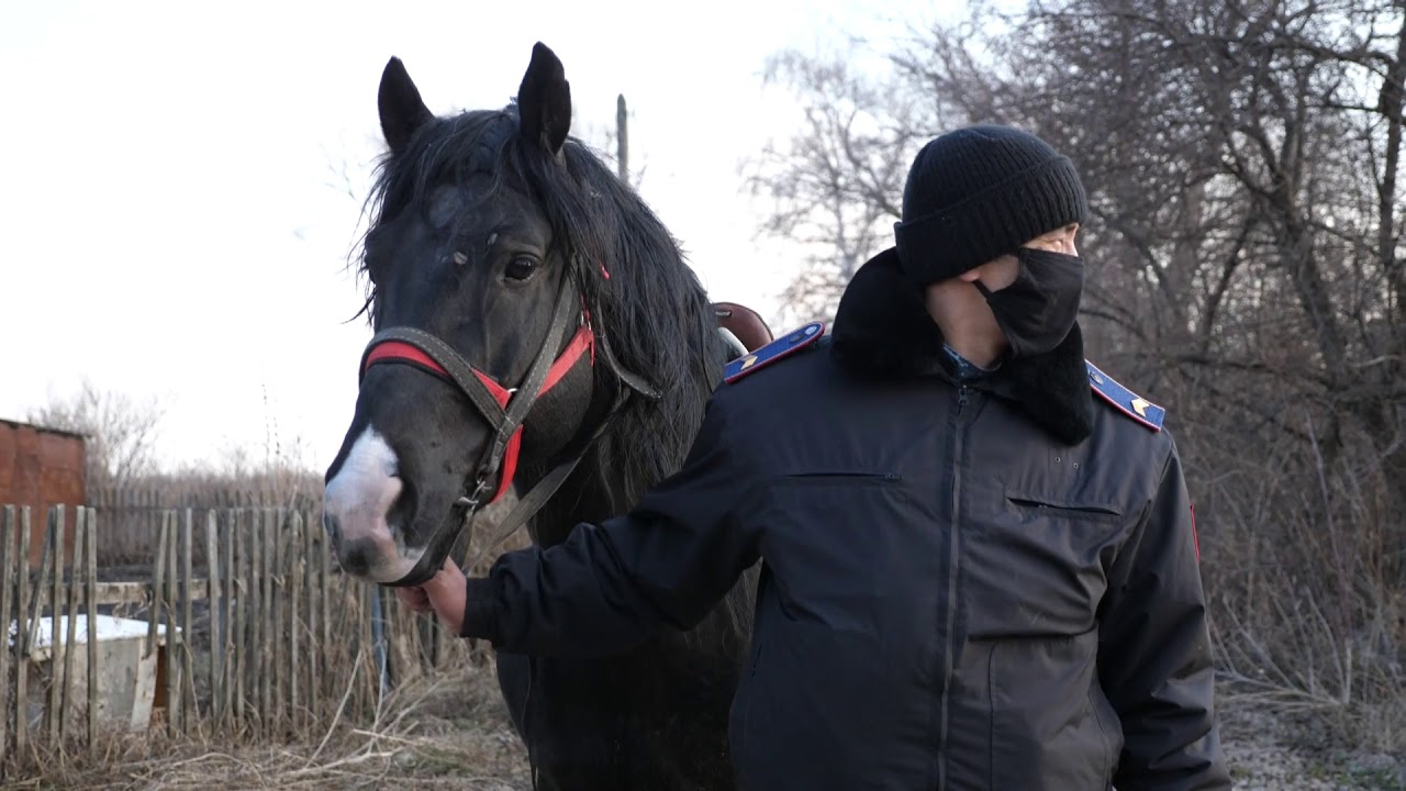 Жителей Петропавловска просят отказаться от посещения дач из-за коронавируса