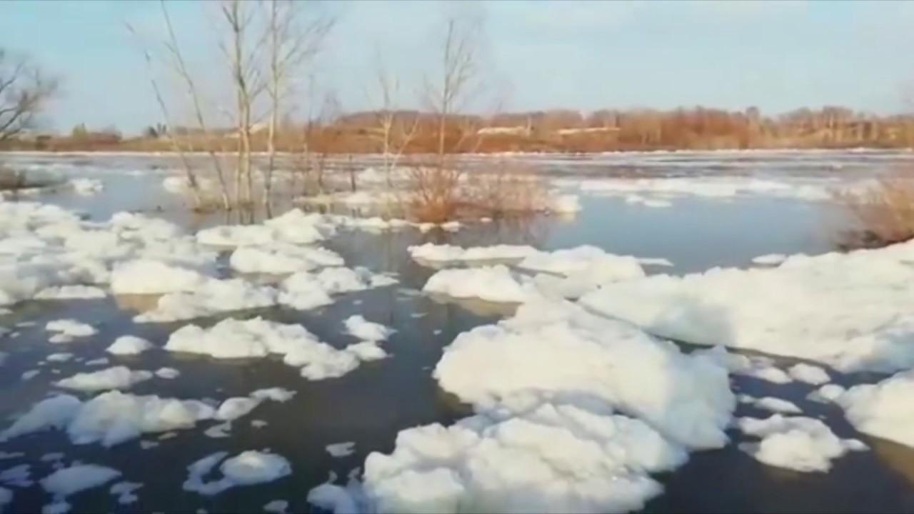 Ишим на севере Казахстана выходит из берегов