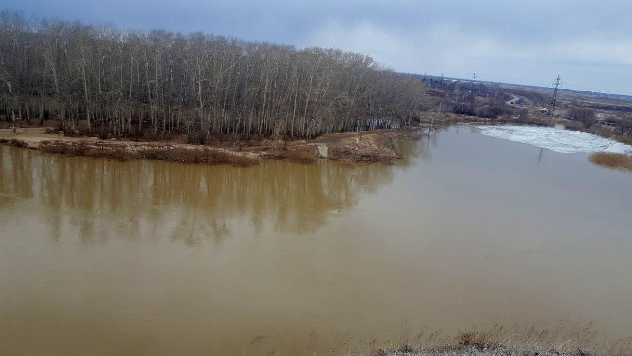 Паводок в Петропавловске: дачи, Заречный посёлок и Мичурино — в зоне риска