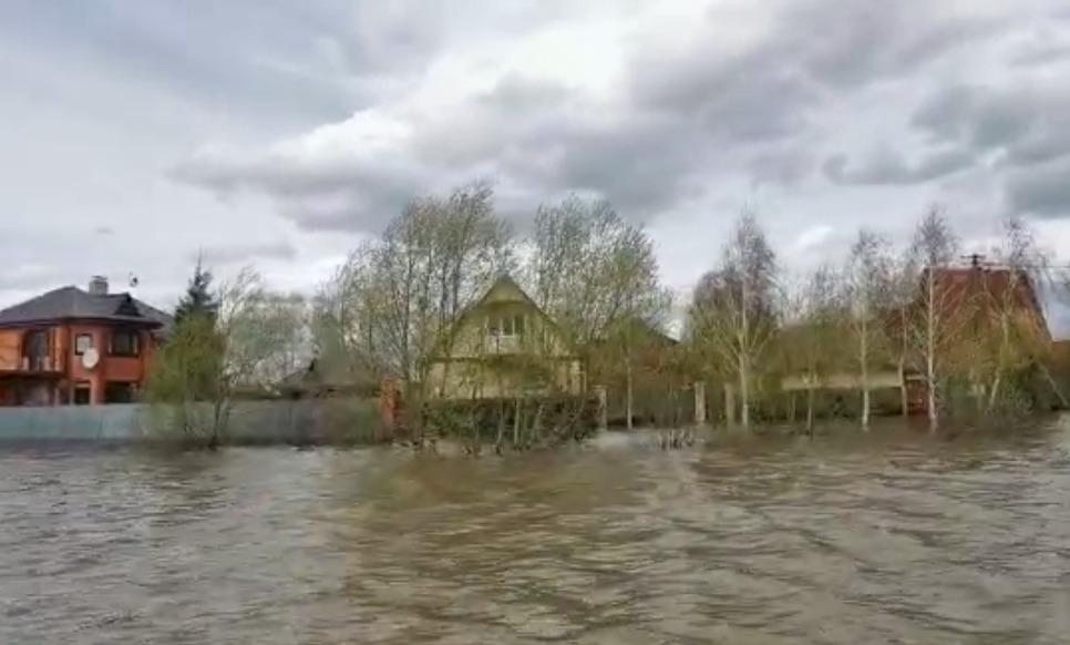 На некоторые дачи Петропавловска — пока только вплавь