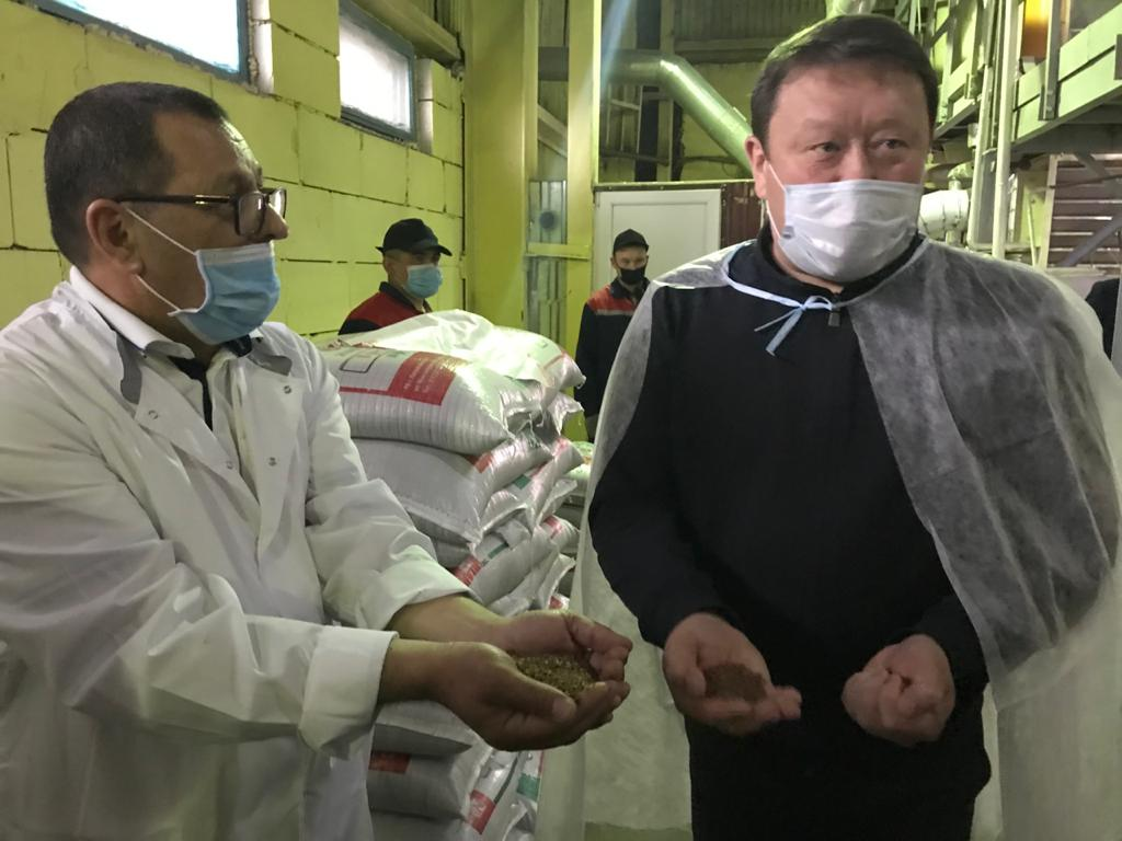 Как североказахстанцы могут укрепить иммунитет и не бояться эпидемий