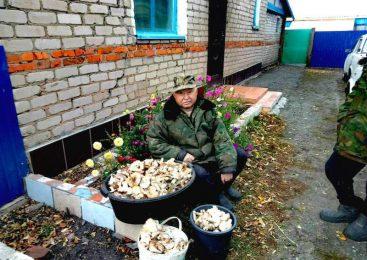 Жители деревень на севере Казахстана сделали запасы на зиму