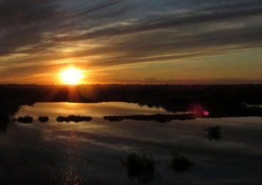 Природа Кызылжарского района: озеро Карабек и бескольская старица