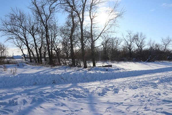 Ситуация с коронавирусом в Северо-Казахстанской области на 9 декабря