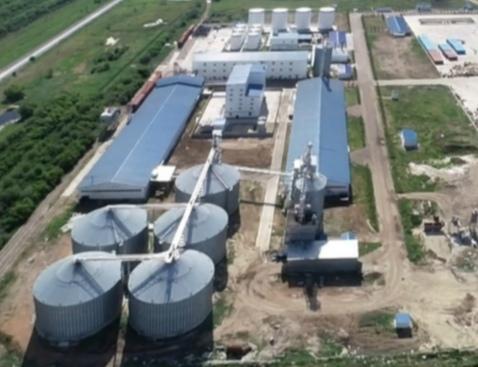На севере Казахстана будут производить протеиновые добавки