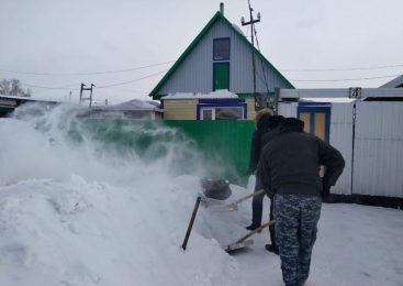 В Петропавловске полицейские взялись за лопаты