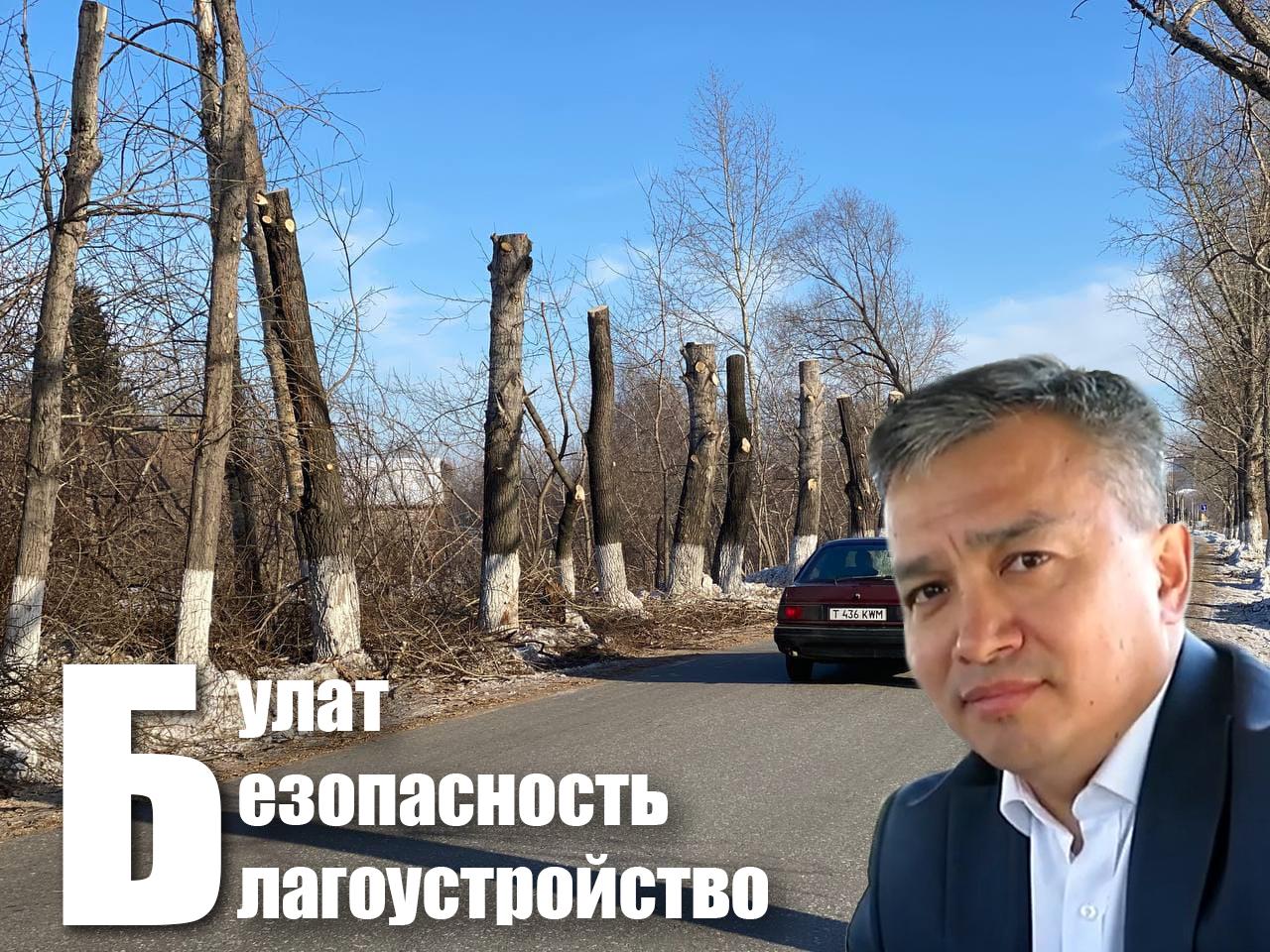Аким Петропавловска прокомментировал «благоустройство» аллеи в Заречном