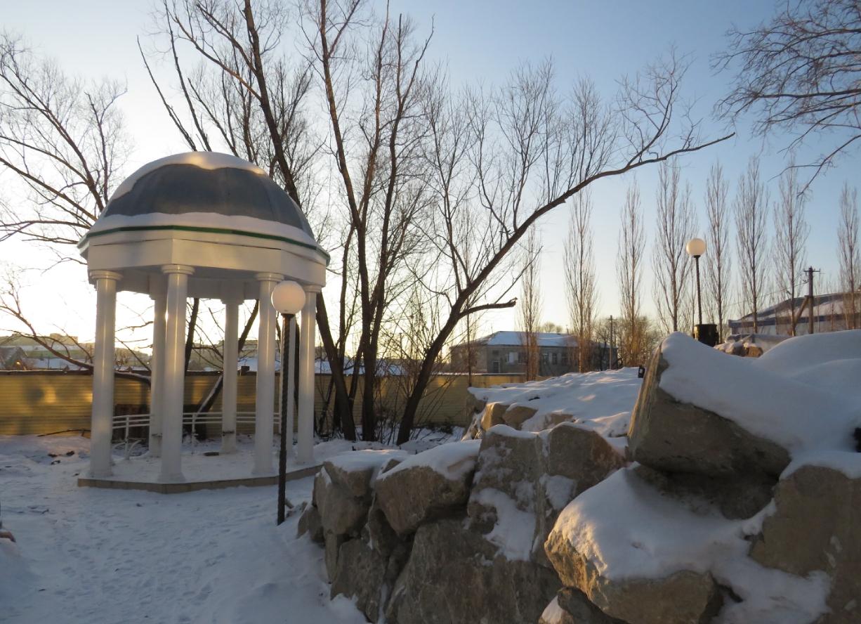 В Петропавловске от Ботанического сада хотят оторвать кусок земли