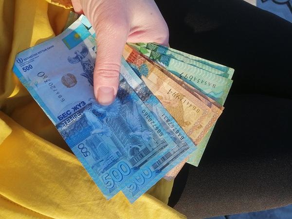 На севере Казахстана 30 млн тенге перекочевали из карманов жителей в казну