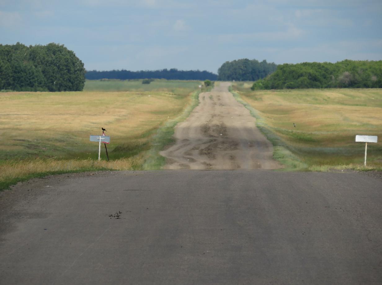 На севере Казахстана на ремонт 12 километров дороги потратят 1 миллиард тенге
