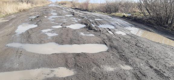 Весна утопила остатки асфальта: сельчане на севере Казахстана обратились к акиму