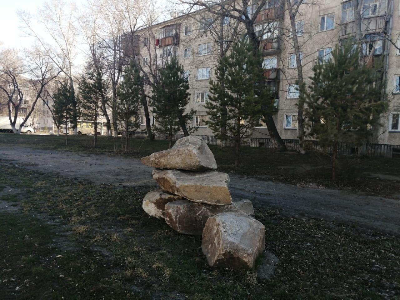 Нужны ли Петропавловску деревья-крупномеры
