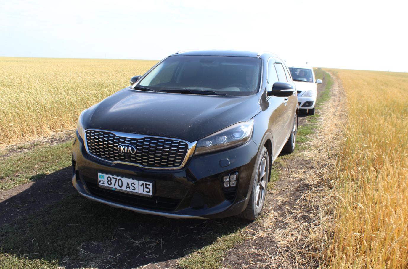 Надоело экономить: чиновники Северо-Казахстанской области закупают новые автомобили