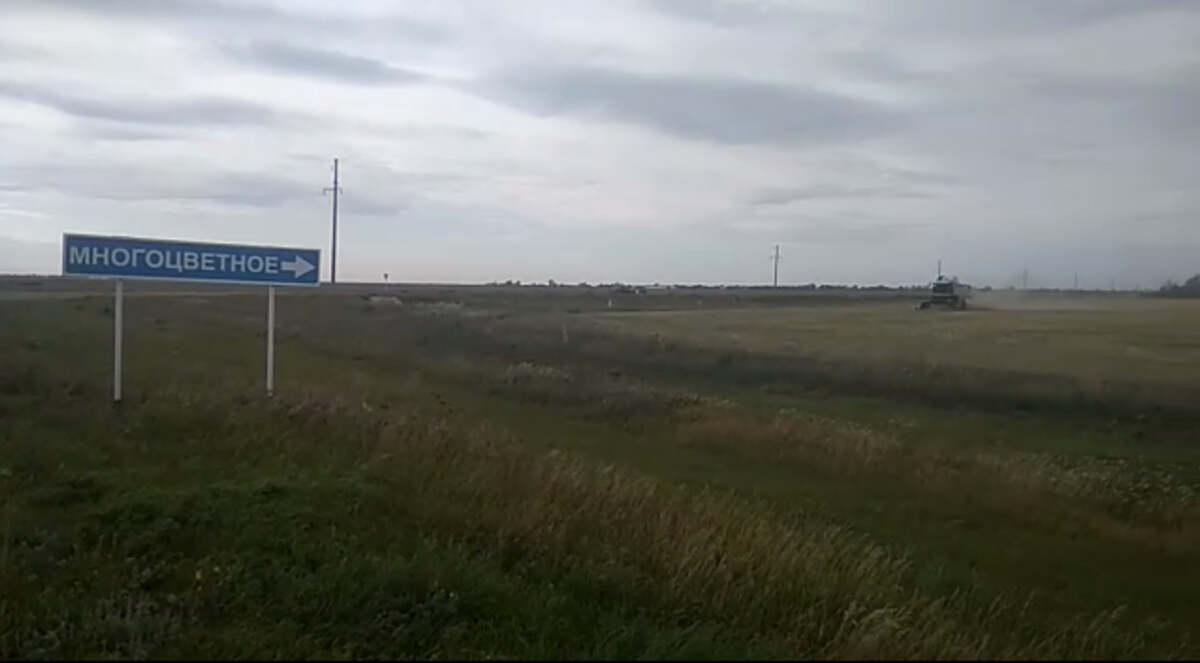 На севере Казахстана украли 40 тонн чечевицы с сельского тока